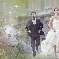«Милая моя, судьбой неповторимая ...» :: vitalsi Зайцев