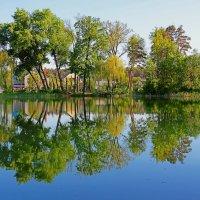 На деревенском пруду. :: Laborant Григоров