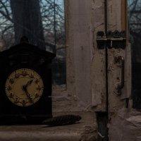 Часы с кукушкой. :: Сергей Касимов