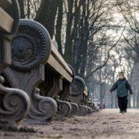 Раз,  два, три, четыре, пять вышел мальчик погулять :: Valeriy Piterskiy