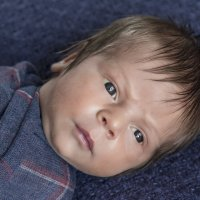 Малыш :: Виктория Агаркова