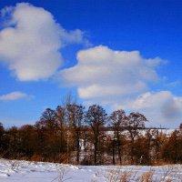 Февраль... Уж близко тёплое дыхание весны... :: Евгений Юрков