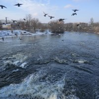 Великие Луки. На реке, на Ловати... :: Владимир Павлов