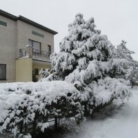 Зима решила не отступать и не сдаваться ... :: Mariya laimite