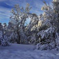 Мурманск. И у нас есть снег! :: kolin marsh