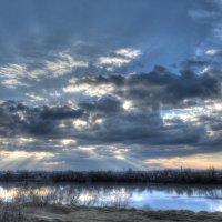 серый февраль :: Алексей Меринов