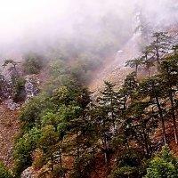 Крым.  Осень в горах. :: Ivana