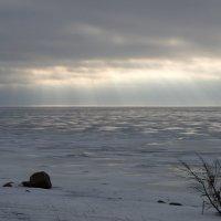 Финский залив :: Геннадий Кульков