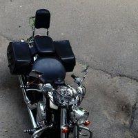 Мотоцикл :: Николай Холопов