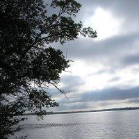 Утренний берег :: Булаткина Светлана