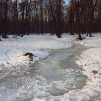 Ручей зимой :: Андрей Лукьянов