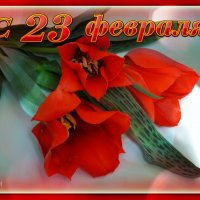 С 23 февраля, дорогие наши мужчины!!!! :: *MIRA* **