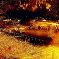 Осенний листопад. :: Владимир Бочкарёв