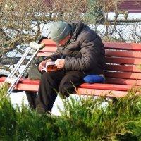 Февральским днем...в Александровском парке. :: Лара ***