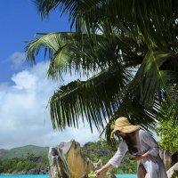 Двухсотлетняя черепаха Сейшельских островов :: Марина Мудрова