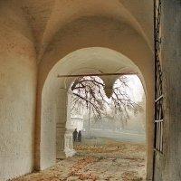 В прошлое нашедший нас портал... :: Лесо-Вед (Баранов)