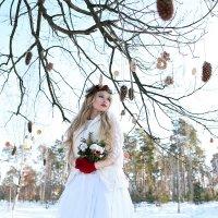 зимняя сказка :: Мирослава Марциненко