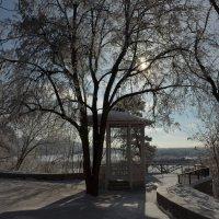Беседка в парке :: Сергей Тагиров