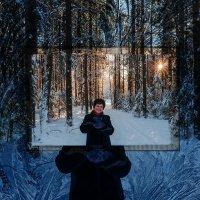 Зимний портрет. :: Валерий Молоток