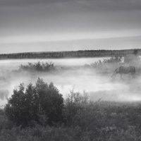 одиночество (коллаж) :: Алена Дегтярёва