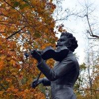 Осенняя скрипка :: Александр Кокарев