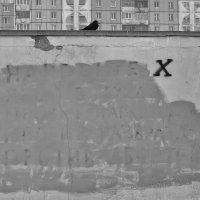 ...уравнение с одним неизвестным... :: Ольга Нарышкова