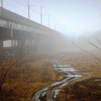 Вешний туман. :: Laborant Григоров