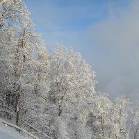 Зима :: Наталья Тагирова