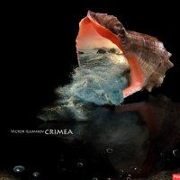 обложка альбома :: viton