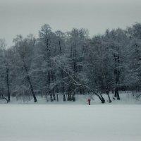Снежный февраль :: Надежда Бахолдина