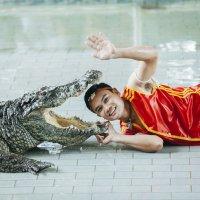 Шоу крокодилов :: Юрий Лобачев