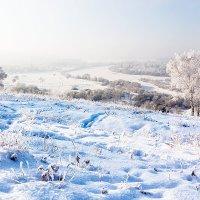 Туманный полдень :: Анатолий Иргл