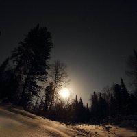 Ночь на Алтае :: Сергей Лучкин