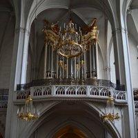 Орган в храме :: Ольга