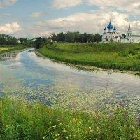 Суздаль, вид на кремль :: Валерий Толмачев
