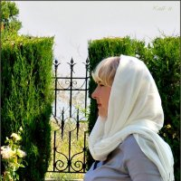Девушка с розами :: Кай-8 (Ярослав) Забелин