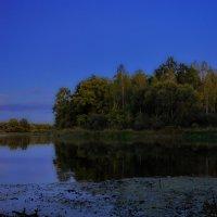 Лунная  ночь  на  Березине. :: Валера39 Василевский.