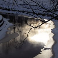 Немного солнца в холодной воде... :: Ирина Румянцева