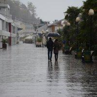 Дождь. :: Руслан Сасонов