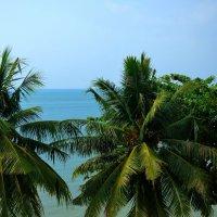 magical Thailand :: Дмитрий Боргер