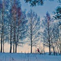 Бег при луне :: Валерий Талашов