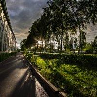 После дождя :: Николай Буклинский