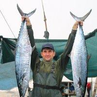 две замечательные рыбки :: Ефим Журбин