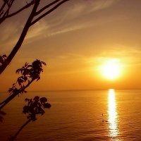 Закат.  Море. :: Ivana