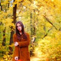 Осенняя Дарья :: Анастасия Сидорова