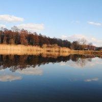 озерце :: Дарина Нагорна