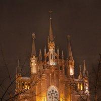 Римско-католический собор :: Елена Назарова