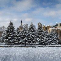 Зима в городе :: Лидия Цапко