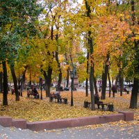 Осень в городе... :: Михаил Болдырев