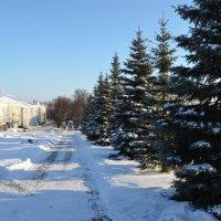 Ясный зимний день :: Наталья Тагирова